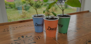 our planet planted coffee cups